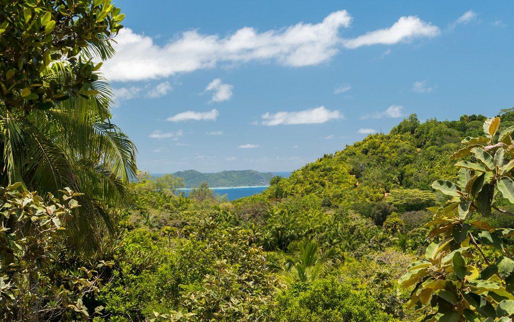 Voyager aux Seychelles : 3 attractions touristiques immanquables à voir