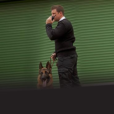 Gardiennage et sécurité : Nos agents de sécurité au service de votre sécurité