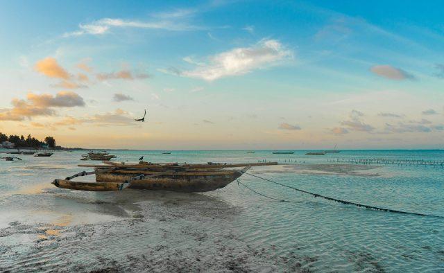 Partir à la découverte des superbes plages de la Tanzanie